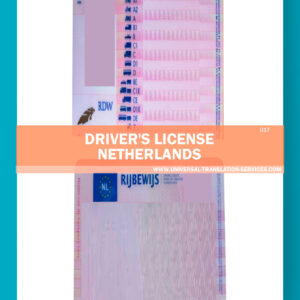 017-drivers-licesnse-netherlands