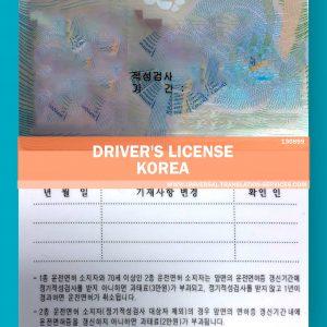 130899-drivers-licence-korea