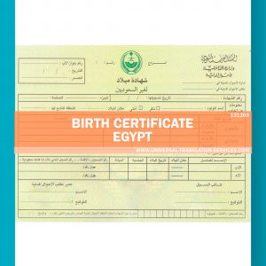 131203-Egypt-Birth-Certificate