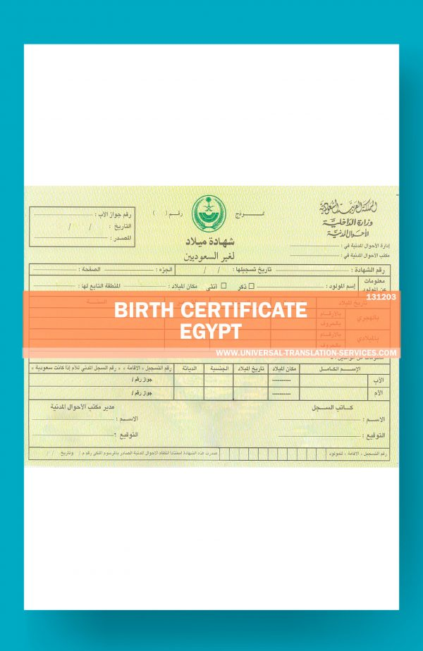 131203-Egypt-Birth-Certificate